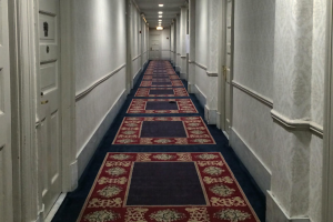 apparent haunting in the congress hotel