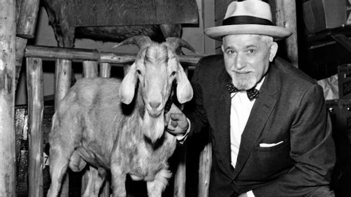 Black and white photo The billy goat from the billy goat curse and his owner