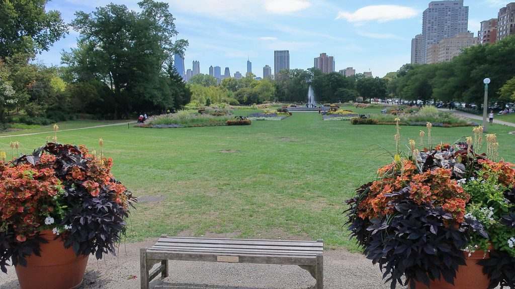 image shows a sunny day in local park chicago
