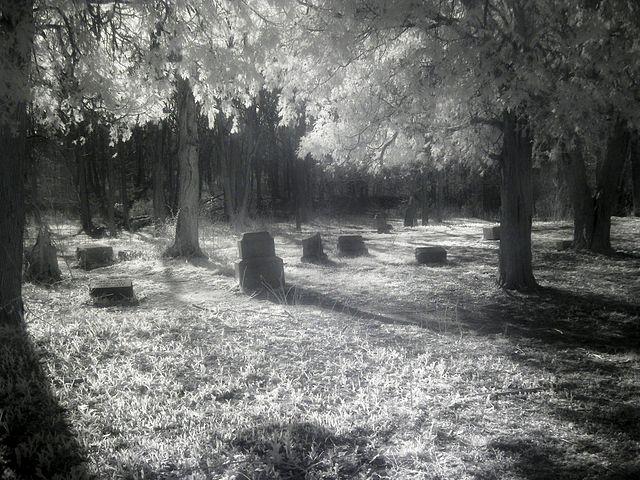 Bachelor's Grove Cemetery - Photo